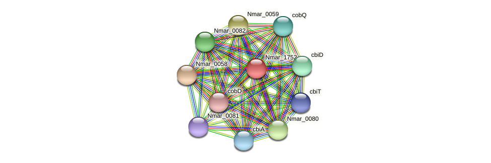 Nmar_1752 protein (Nitrosopumilus maritimus) - STRING interaction network