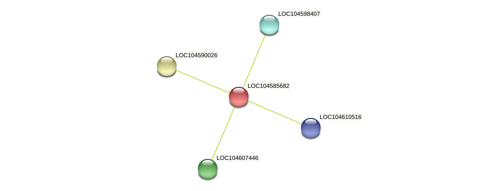 XP_010240943.1 protein (Nelumbo nucifera) - STRING interaction network