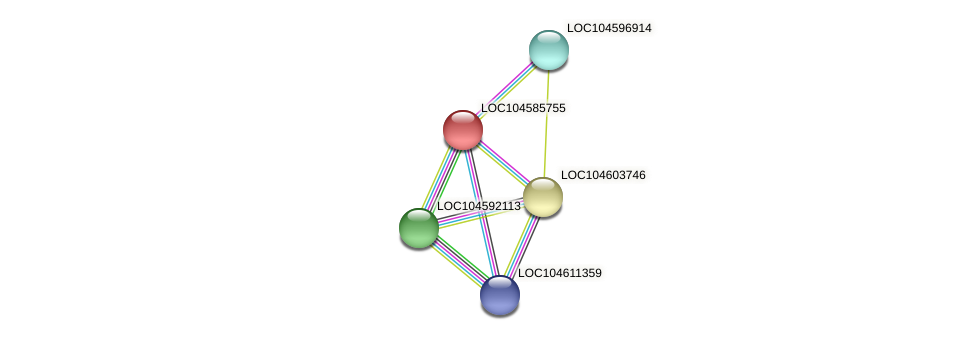 XP_010241035.1 protein (Nelumbo nucifera) - STRING interaction network