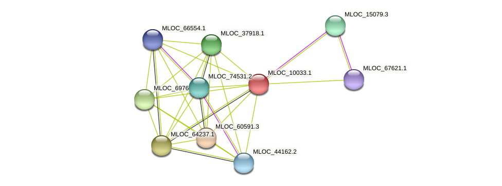 MLOC_10033.1 protein (Hordeum vulgare) - STRING interaction network