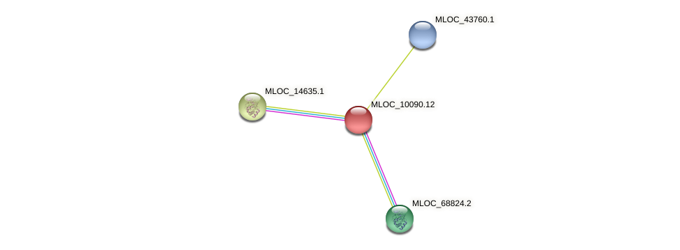 MLOC_10090.1 protein (Hordeum vulgare) - STRING interaction network