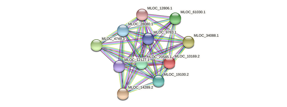 MLOC_10169.2 protein (Hordeum vulgare) - STRING interaction network