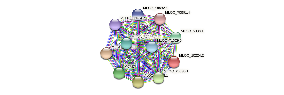 MLOC_10224.2 protein (Hordeum vulgare) - STRING interaction network