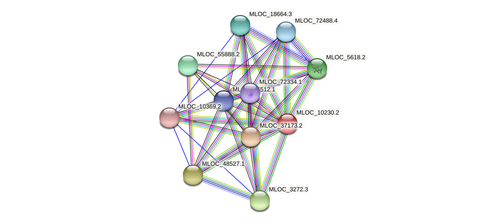MLOC_10230.2 protein (Hordeum vulgare) - STRING interaction network