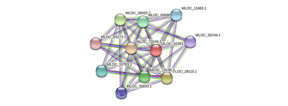 MLOC_10361.1 protein (Hordeum vulgare) - STRING interaction network