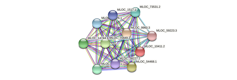 MLOC_10411.2 protein (Hordeum vulgare) - STRING interaction network