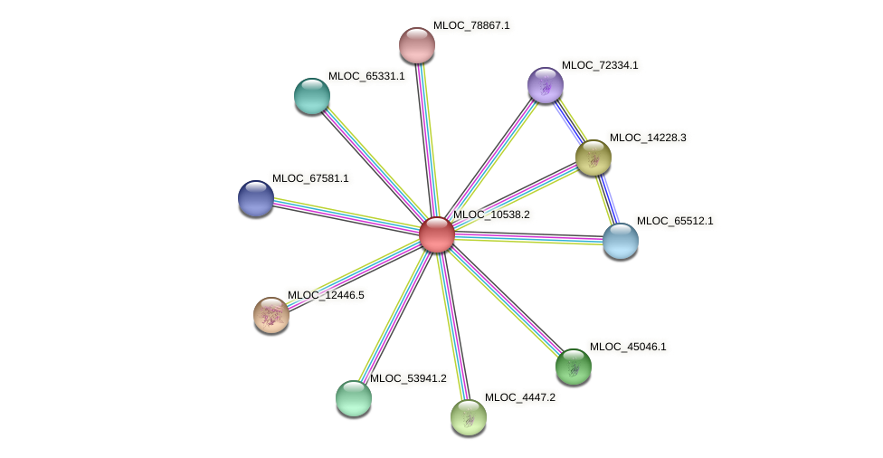 MLOC_10538.2 protein (Hordeum vulgare) - STRING interaction network