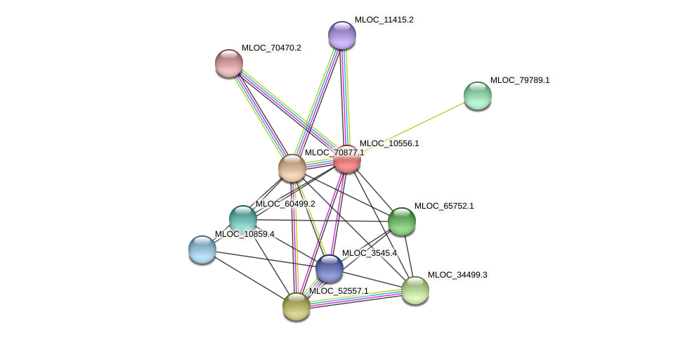 MLOC_10556.1 protein (Hordeum vulgare) - STRING interaction network