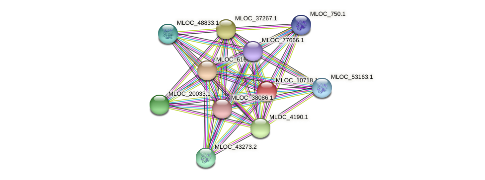 MLOC_10718.1 protein (Hordeum vulgare) - STRING interaction network