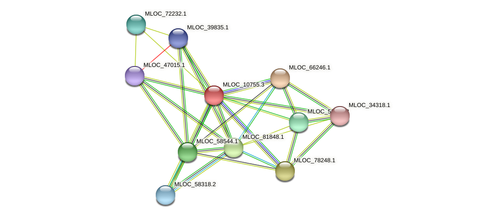 MLOC_10755.3 protein (Hordeum vulgare) - STRING interaction network