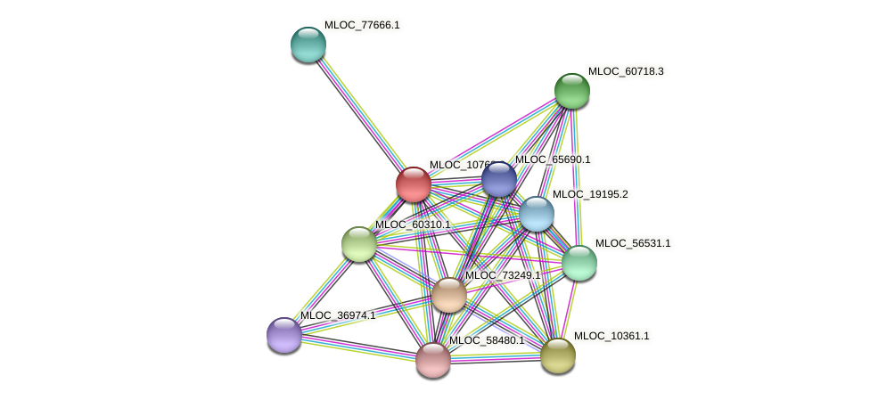 MLOC_10763.2 protein (Hordeum vulgare) - STRING interaction network