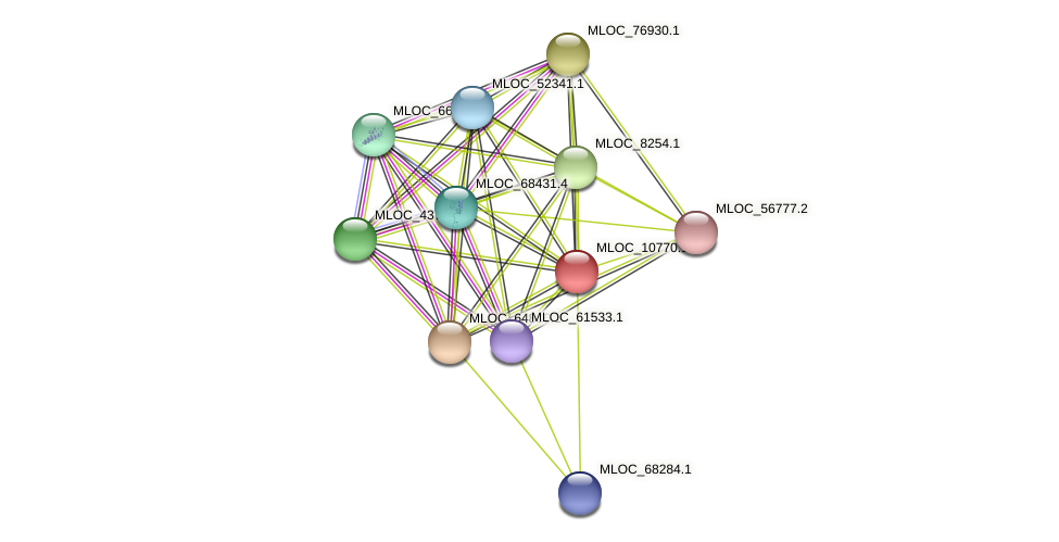 MLOC_10770.1 protein (Hordeum vulgare) - STRING interaction network