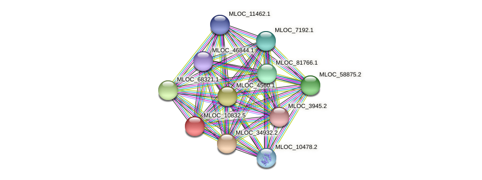 MLOC_10832.5 protein (Hordeum vulgare) - STRING interaction network