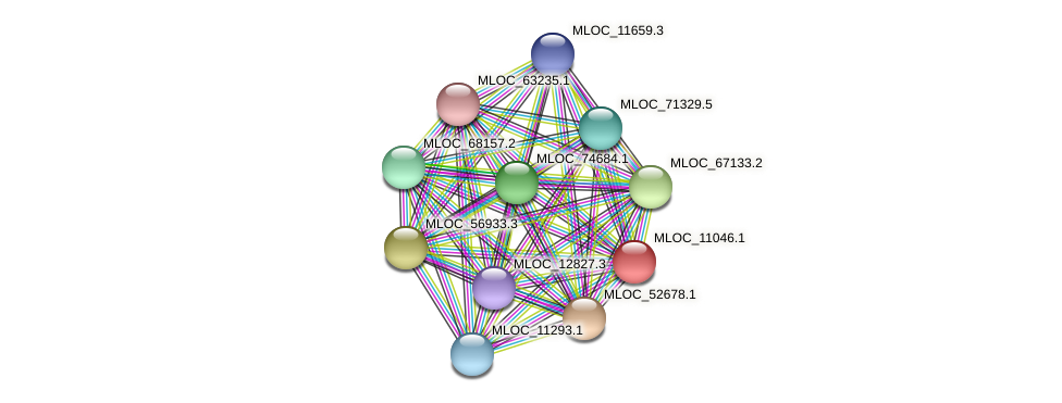 MLOC_11046.1 protein (Hordeum vulgare) - STRING interaction network