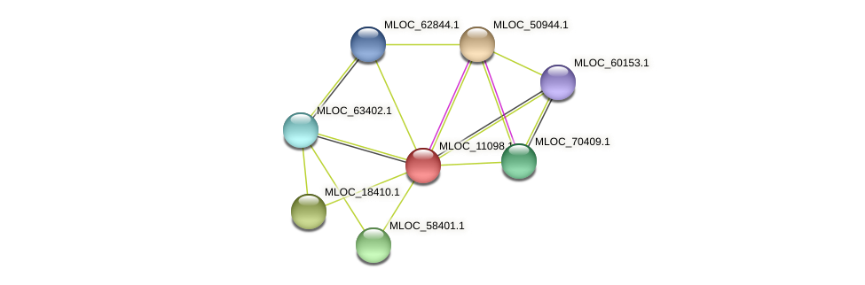 MLOC_11098.1 protein (Hordeum vulgare) - STRING interaction network