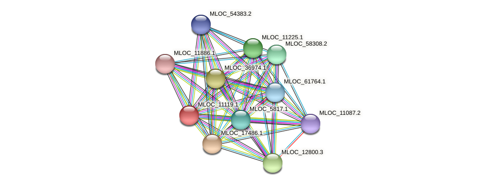 MLOC_11119.1 protein (Hordeum vulgare) - STRING interaction network