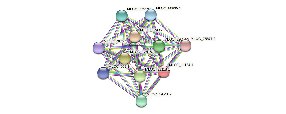 MLOC_11154.1 protein (Hordeum vulgare) - STRING interaction network