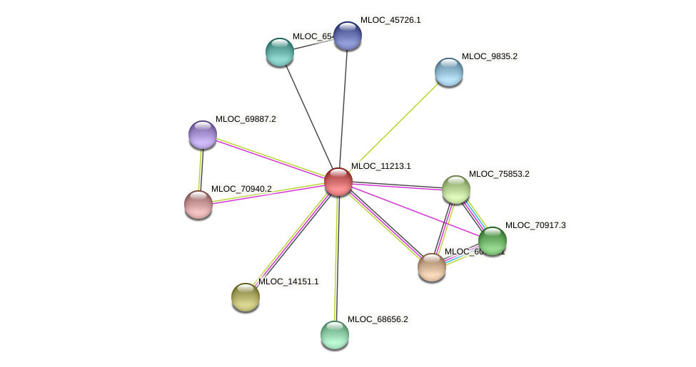 MLOC_11213.1 protein (Hordeum vulgare) - STRING interaction network