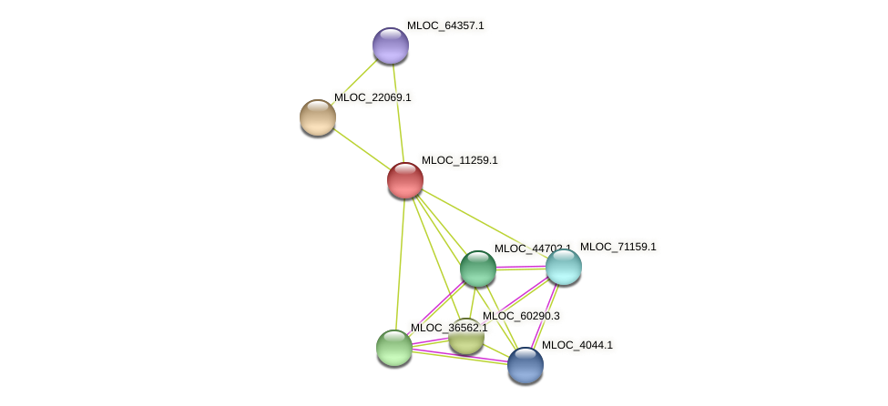 MLOC_11259.1 protein (Hordeum vulgare) - STRING interaction network