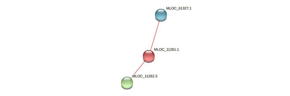 MLOC_11261.1 protein (Hordeum vulgare) - STRING interaction network
