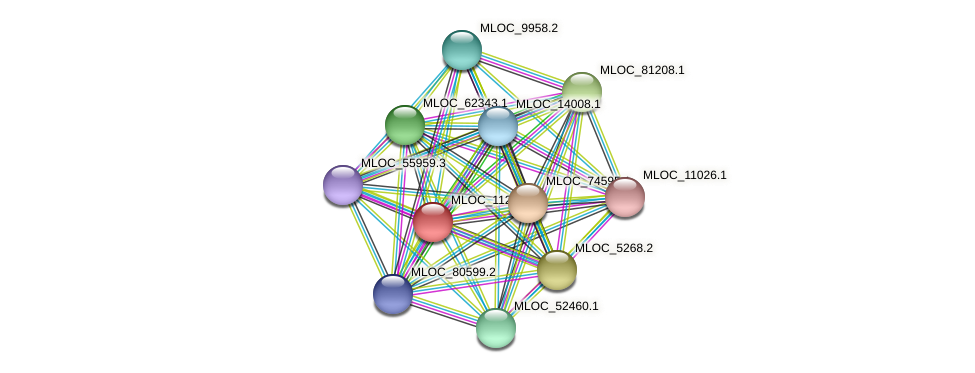 MLOC_1128.1 protein (Hordeum vulgare) - STRING interaction network