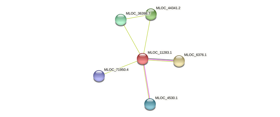 MLOC_11283.1 protein (Hordeum vulgare) - STRING interaction network