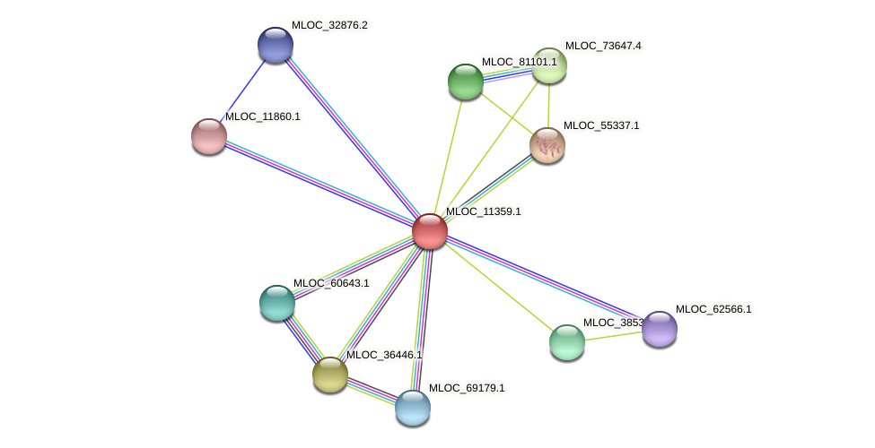MLOC_11359.1 protein (Hordeum vulgare) - STRING interaction network