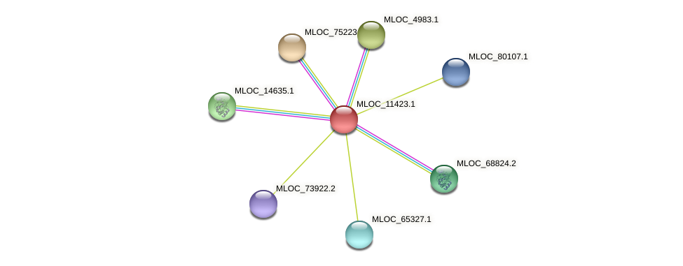 MLOC_11423.1 protein (Hordeum vulgare) - STRING interaction network