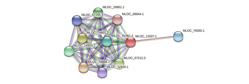 MLOC_11507.1 protein (Hordeum vulgare) - STRING interaction network