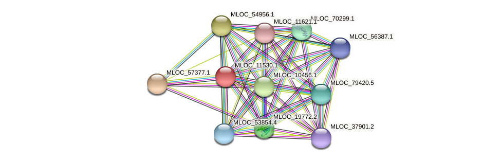 MLOC_11530.1 protein (Hordeum vulgare) - STRING interaction network