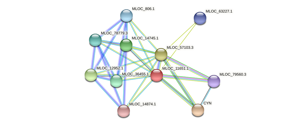 MLOC_11651.1 protein (Hordeum vulgare) - STRING interaction network