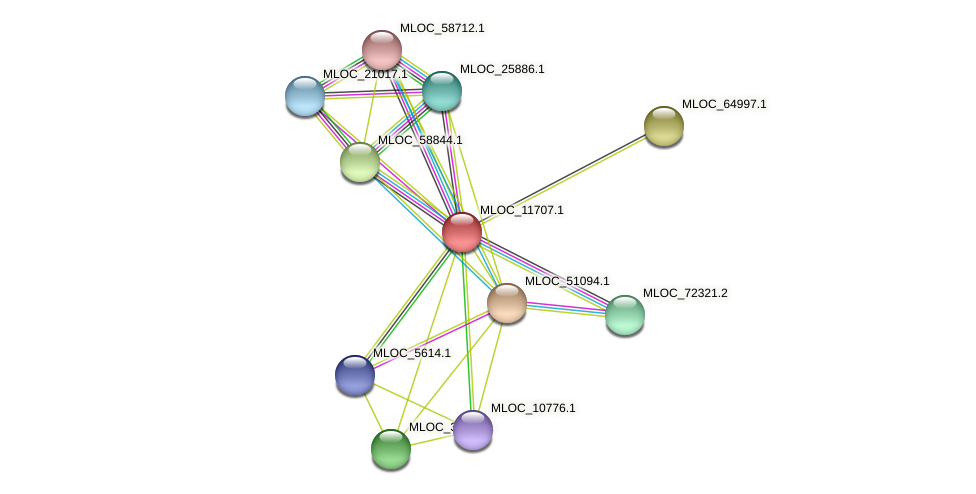 MLOC_11707.1 protein (Hordeum vulgare) - STRING interaction network