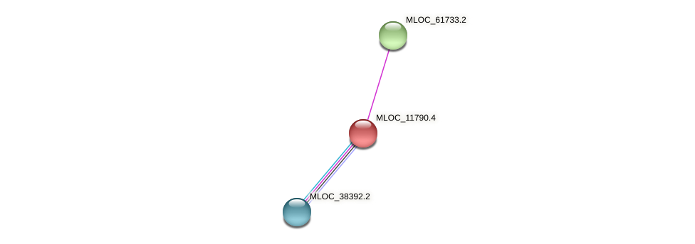 MLOC_11790.4 protein (Hordeum vulgare) - STRING interaction network