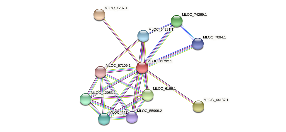 MLOC_11792.1 protein (Hordeum vulgare) - STRING interaction network