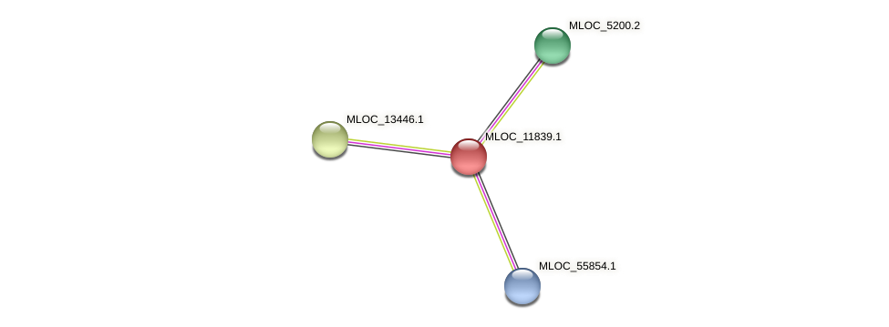MLOC_11839.1 protein (Hordeum vulgare) - STRING interaction network