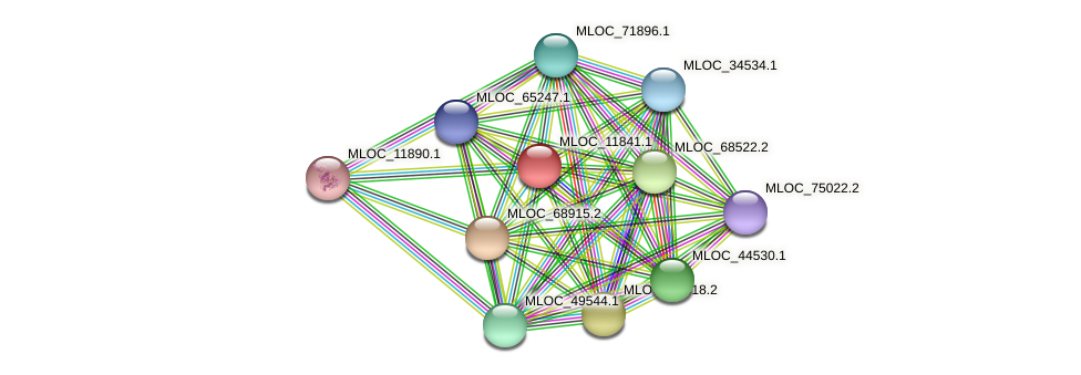 MLOC_11841.1 protein (Hordeum vulgare) - STRING interaction network