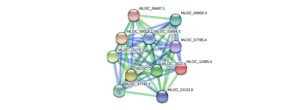 MLOC_11885.4 protein (Hordeum vulgare) - STRING interaction network
