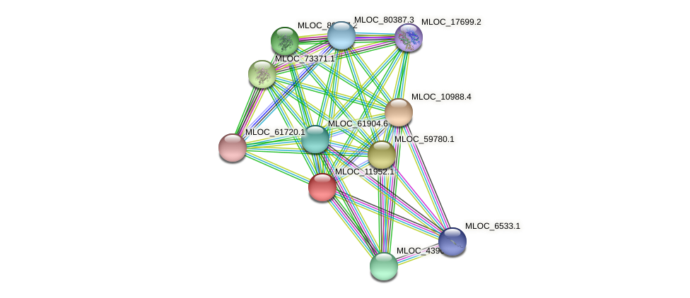 MLOC_11952.1 protein (Hordeum vulgare) - STRING interaction network