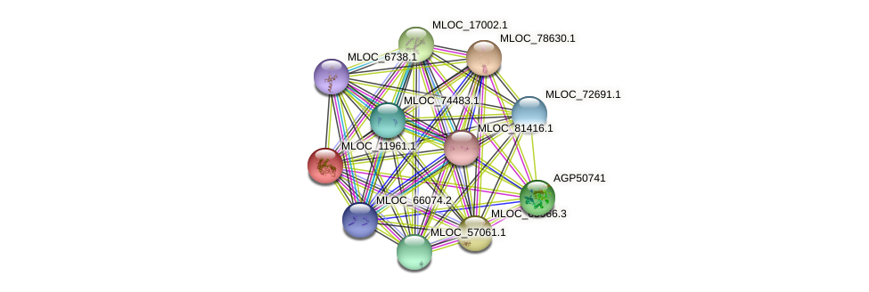 MLOC_11961.1 protein (Hordeum vulgare) - STRING interaction network