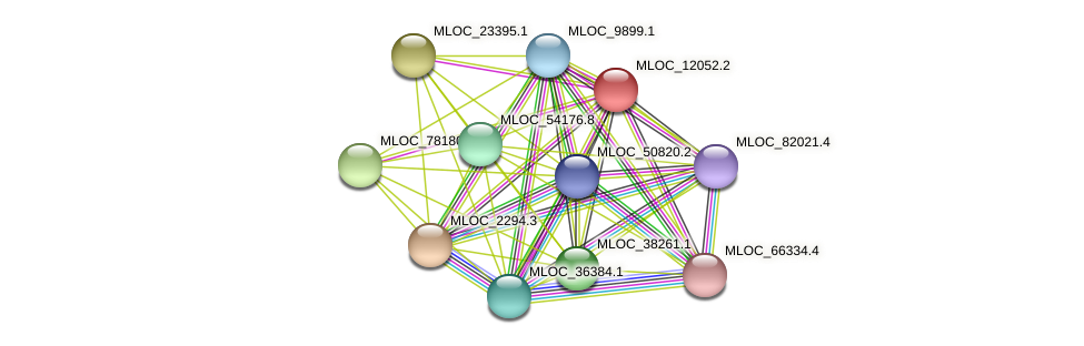 MLOC_12052.2 protein (Hordeum vulgare) - STRING interaction network