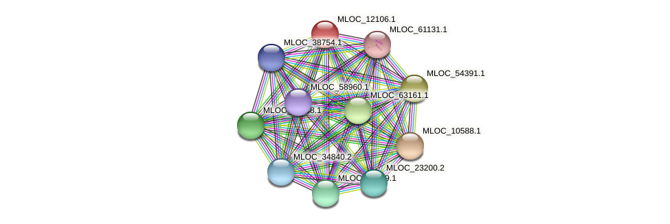 MLOC_12106.1 protein (Hordeum vulgare) - STRING interaction network