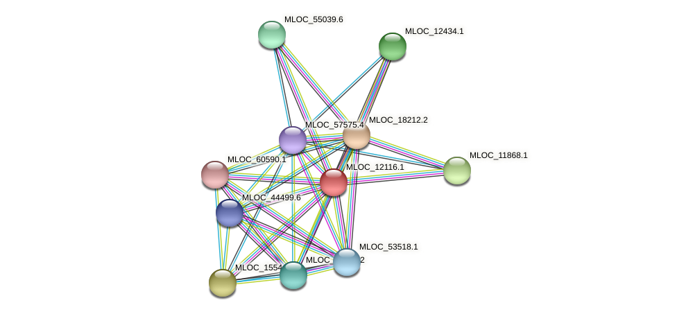 MLOC_12116.1 protein (Hordeum vulgare) - STRING interaction network