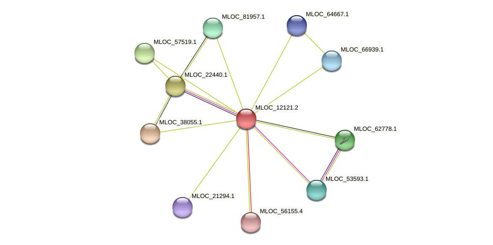 MLOC_12121.2 protein (Hordeum vulgare) - STRING interaction network