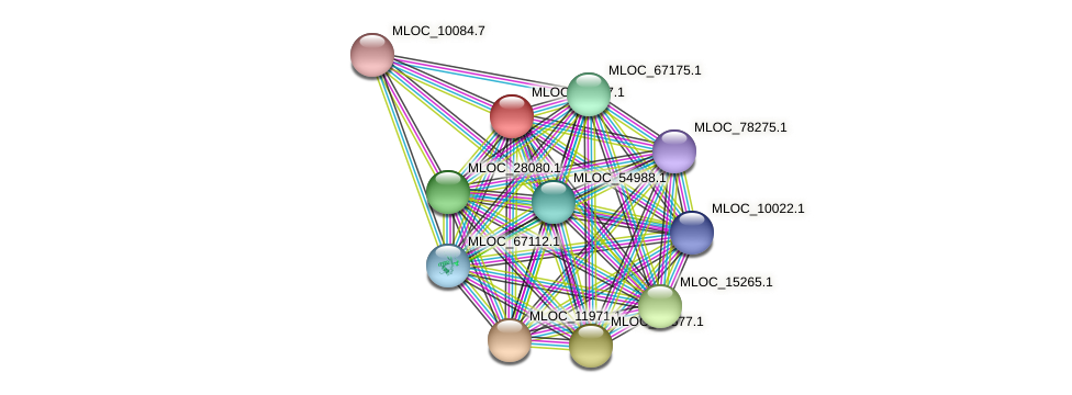 MLOC_12127.1 protein (Hordeum vulgare) - STRING interaction network