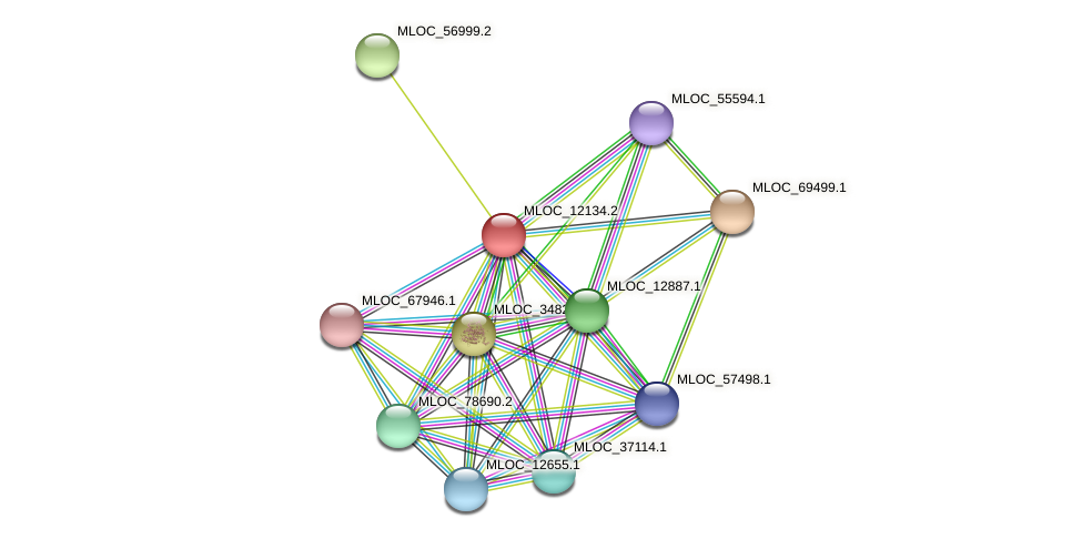 MLOC_12134.2 protein (Hordeum vulgare) - STRING interaction network