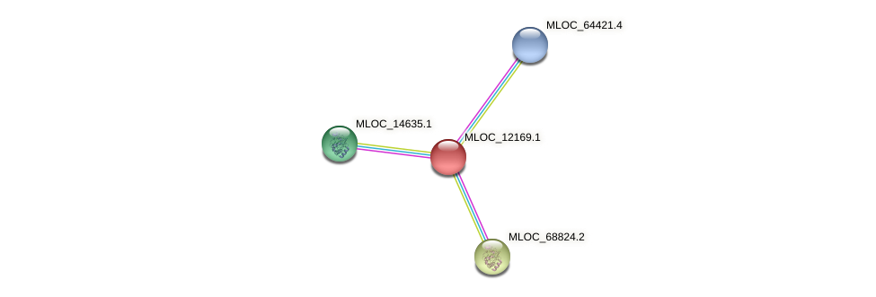 MLOC_12169.1 protein (Hordeum vulgare) - STRING interaction network