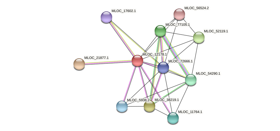 MLOC_12178.1 protein (Hordeum vulgare) - STRING interaction network