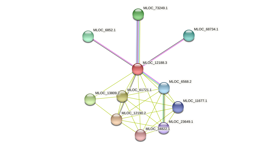 MLOC_12188.3 protein (Hordeum vulgare) - STRING interaction network