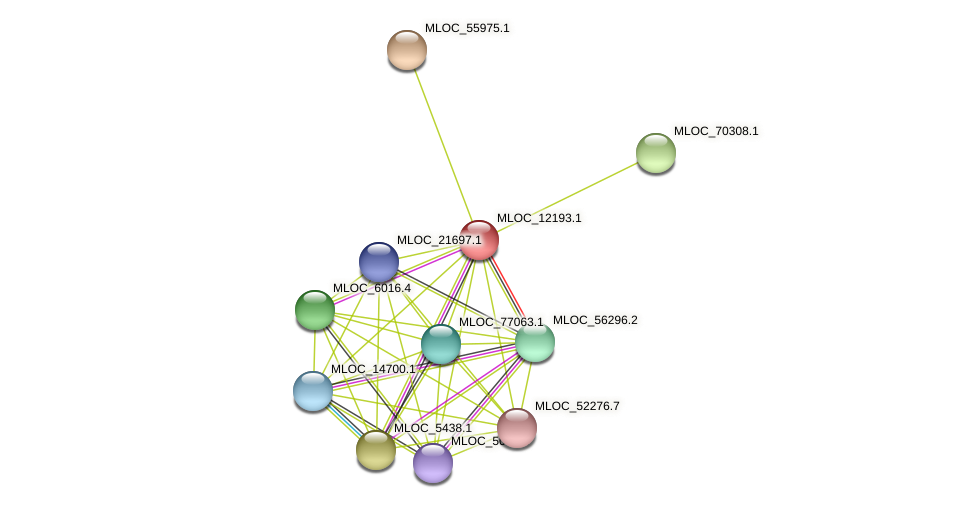 MLOC_12193.1 protein (Hordeum vulgare) - STRING interaction network