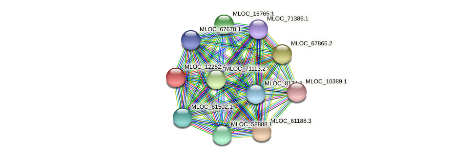 MLOC_12252.4 protein (Hordeum vulgare) - STRING interaction network
